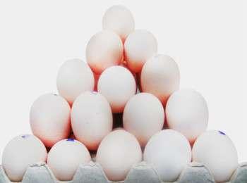 Яйцо как выбрать