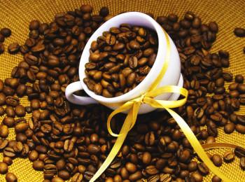 Как готовить кофе в кофеварке