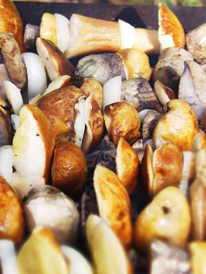 Шашлык для грибов