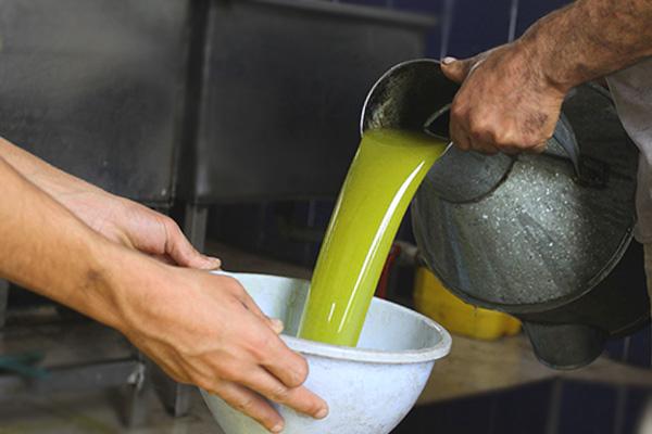 оливковое масло и коньяк от паразитов
