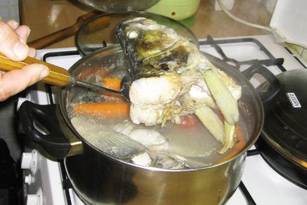 Варим бульон со щукой для заливного