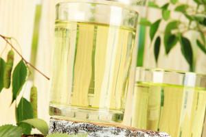 Рецепты березового сока