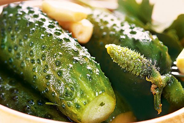 Рецепт засолки малосольных огурцов