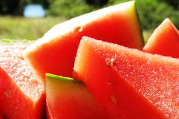 Арбуз для похудения - описание диеты, противопоказания