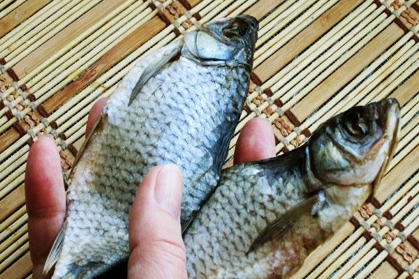 Как хранить сухую рыбку