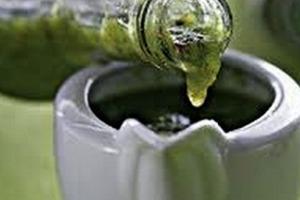 Абхазская зеленая аджика