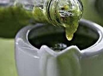 аджика абхазская настоящая зеленая рецепт приготовления