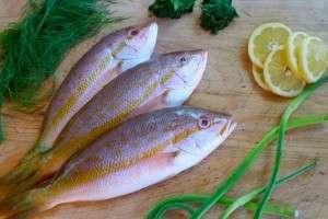 Приправы для рыбы
