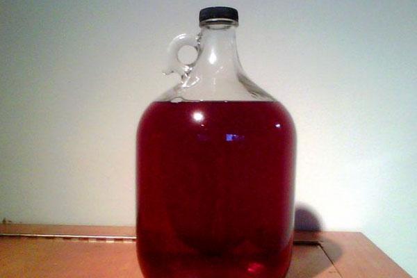Вино из черной смородины рецепт в домашних условиях