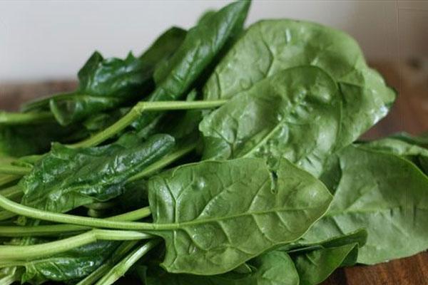 Пищевая ценность шпината