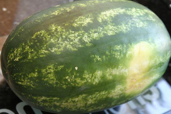Как правильно хранить арбуз в холодильнике